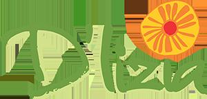 Logo D'lizia